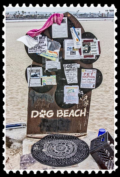 Dog Beach in Ocean Beach, San Diego, California