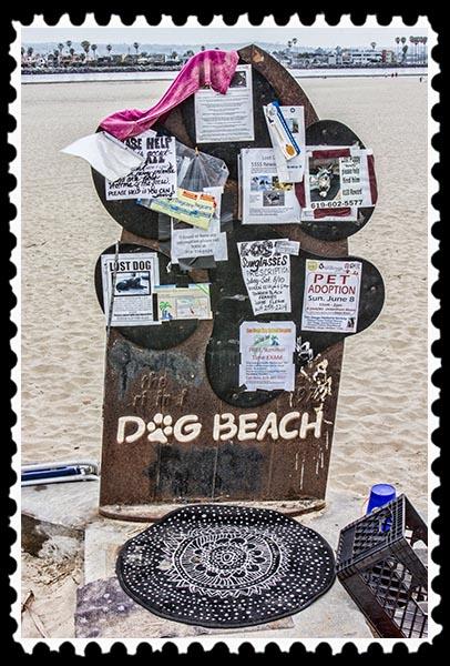 Dog Beach in Ocean Beach, San Diego, California