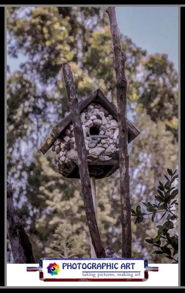 Bird Song birdhouse