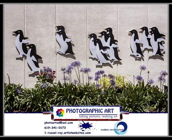 Penguin flight