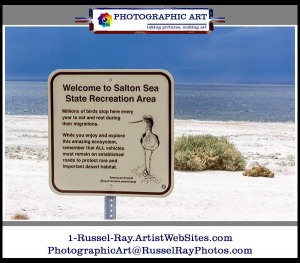 Salton Sea State Recreation Area