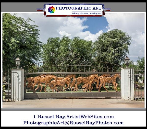 Horsey gate
