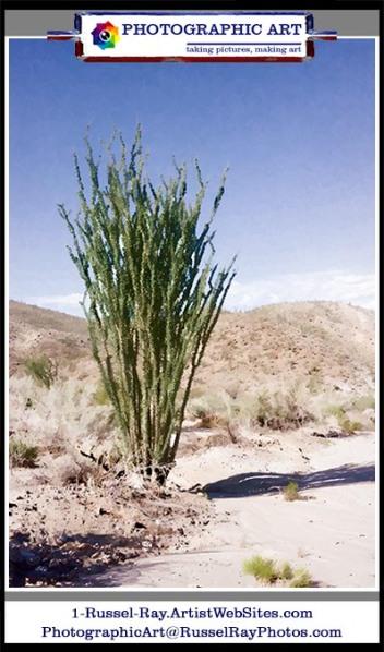 Southern California high desert