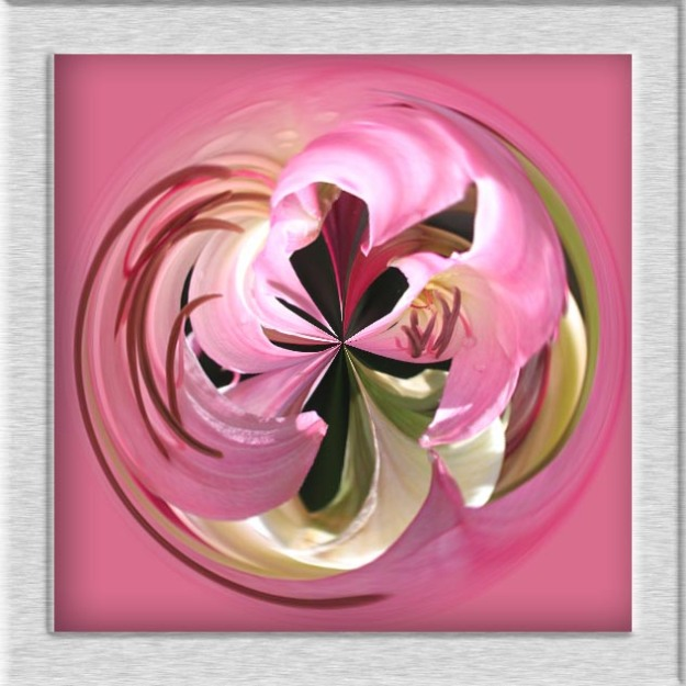 Framed flower orb