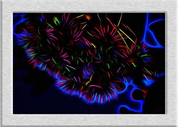 Friday Flower Fiesta with Topaz Glow