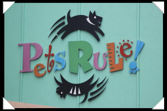 Pets rule at SeaWorld San Diego!
