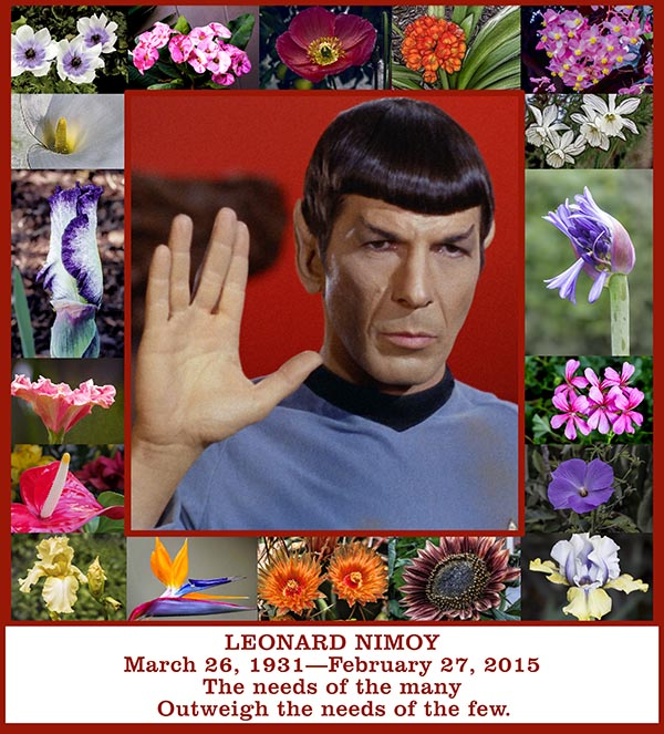 In memory of Leonard Nimoy
