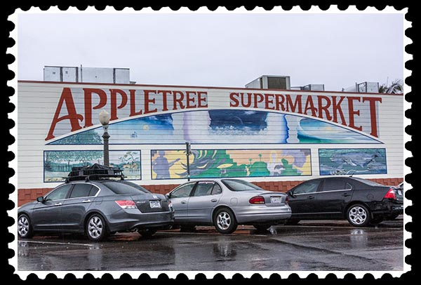 img_0094 appletree mural ocean beach stamp