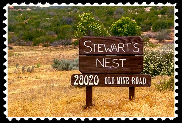 img_2041 stewart's nest boondocks stamp