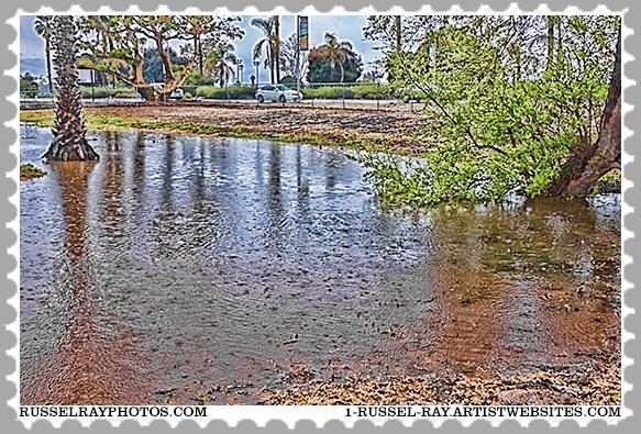 img_0209 ocean beach rain stamp