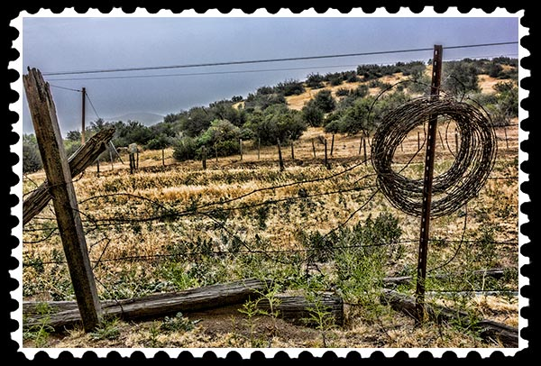 img_2037 boondocks fence stamp