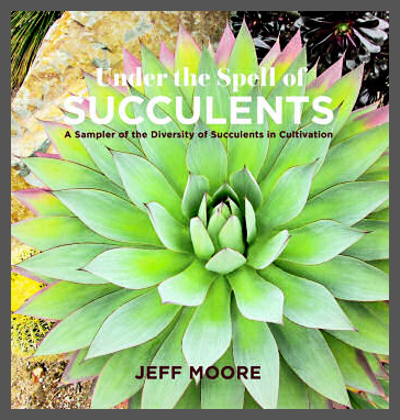 Under the Spell of Succulents by Jeff Moore
