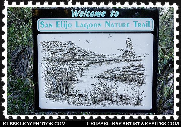 img_0334 san elijo lagoon stamp