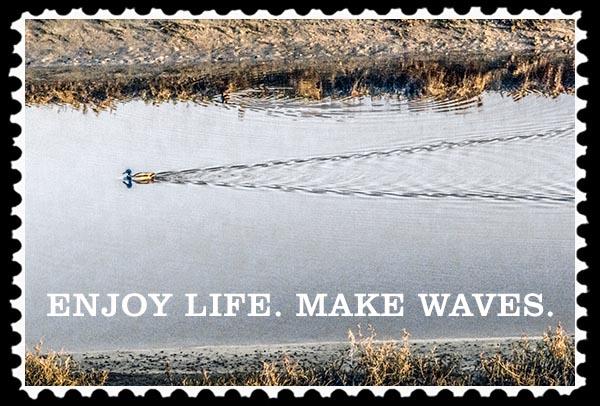 img_0366 enjoy life make saves stamp