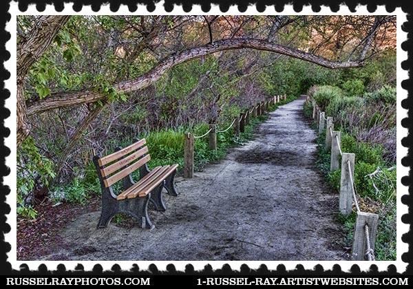 img_0375 san elijo lagoon stamp