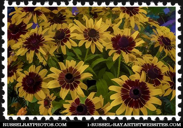 IMG_7371 daisies faa stamp