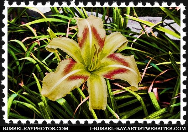 IMG_8355 faa stamp