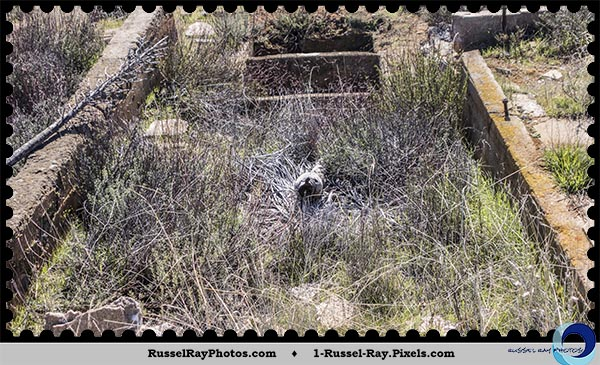 Buckman Springs spring-fed water tank
