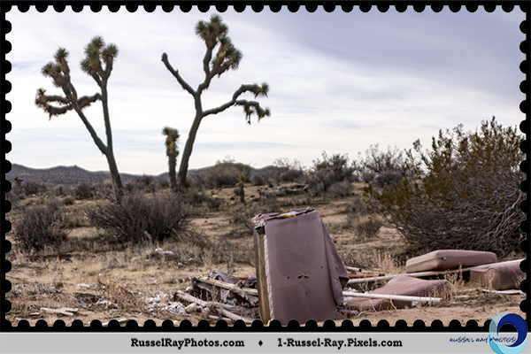 Trash in the Mojave Desert