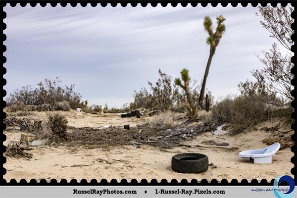 Trash in Mojave Desert