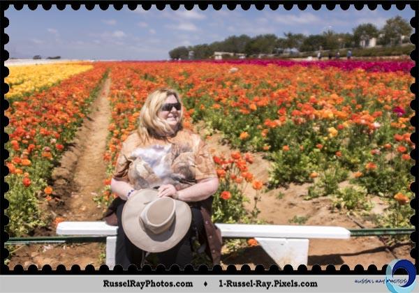 Liz Flint at the Carlsbad Flower Fields