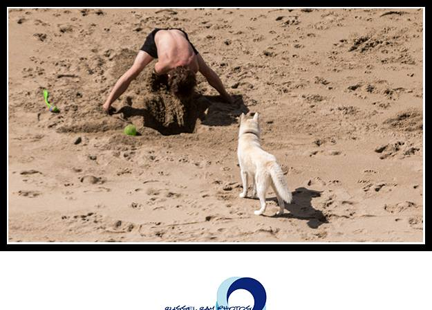 Teaching your dog how to dig in the sand