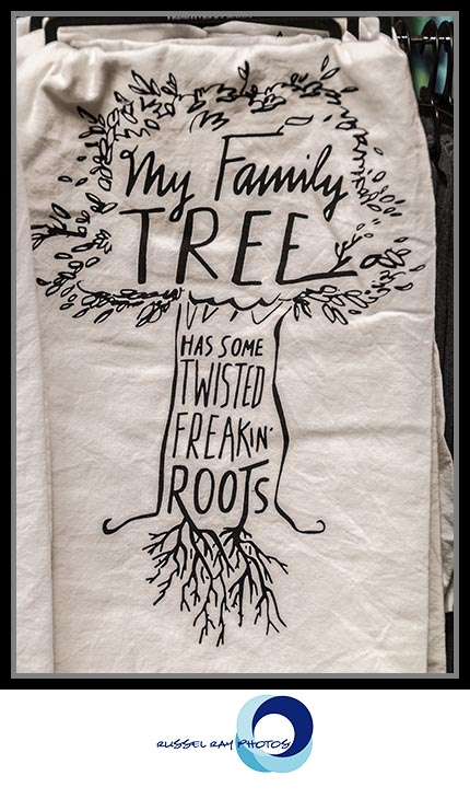 Family tree roots at The Warm Hearth in Julian, California