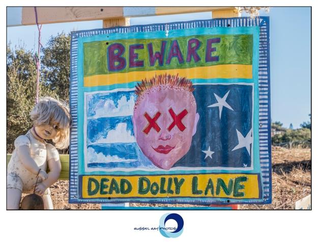 Dead Dolly Lane