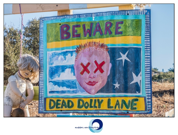 Dead Dolly Lane
