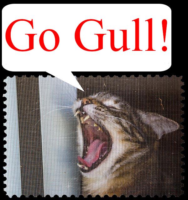 Go Gull!