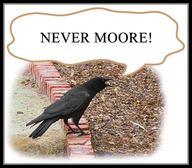 Ha Ha. Moore lost.