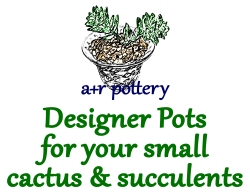 A+R POTTERY—Designer Pots for your small cactus & succulents