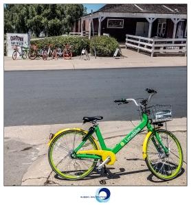Litter bikes