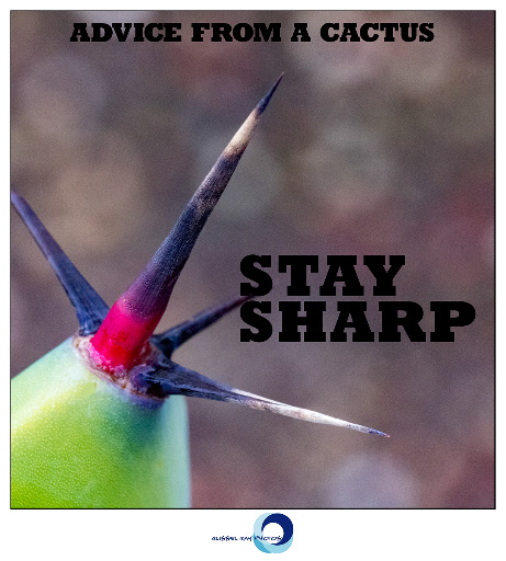 ADVICE FROM A CACTUS—STAY SHARP