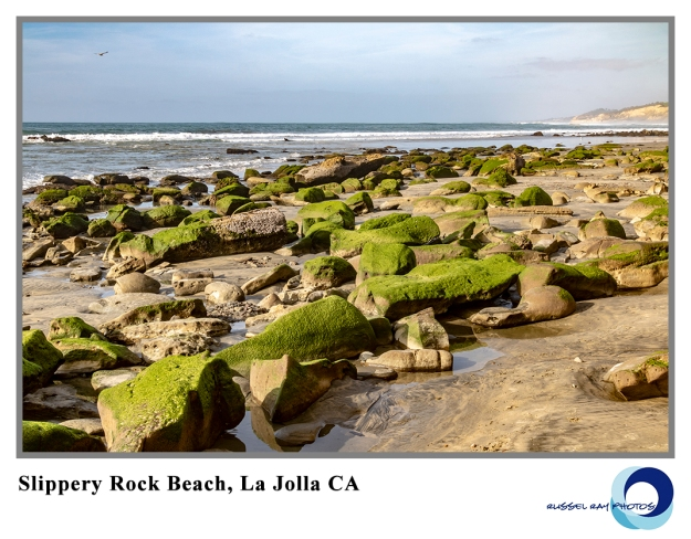 Slippery rock beach north of La Jolla CA