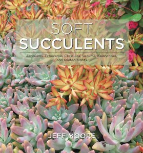 Soft Succulents, by Jeff Moore