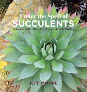 Under The Spell Of Succulents, by Jeff Moore