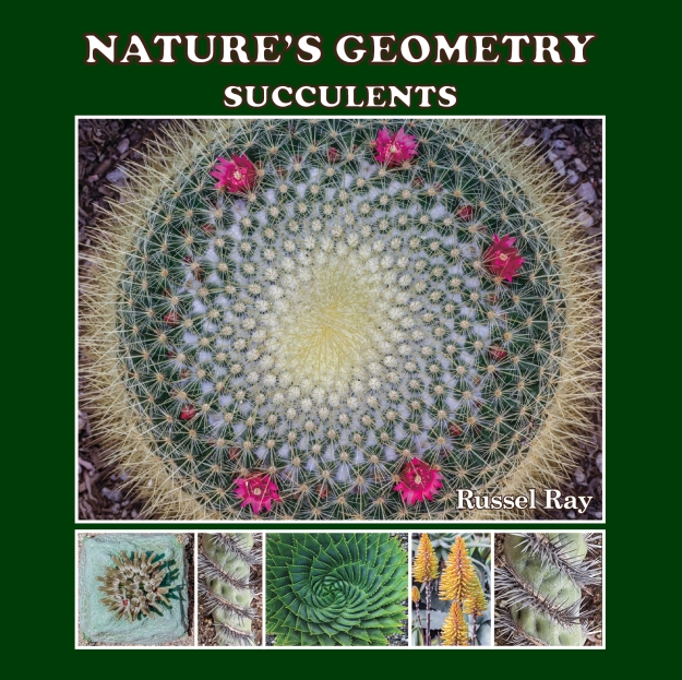 Nature's Geometry: Succulents, by Russel Ray