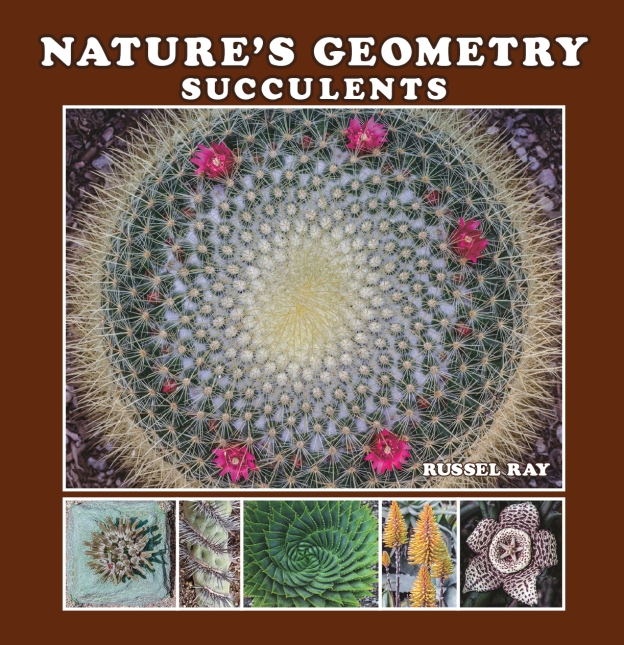 Nature's Geometry: Succulents by Russel Ray