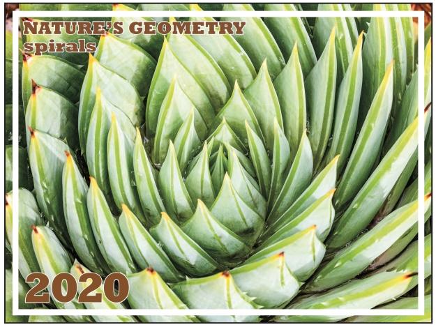 "2020 ""Nature's Geometry: Spirals"" calendar cover"