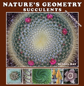 """Nature's Geometry: Succulents"" front cover"