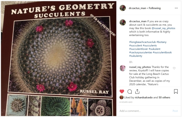 """""""Nature's Geometry: Succulents"""" review"""
